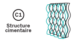 C1_structure_cimentaire